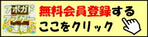 アボガド lp.png